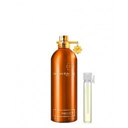 Honey Aoud mini-size | Montale Paris